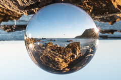 Gazing to the future ... I see the sea, a bird and two suns ... what does it mean? (imajane) Tags: 2019 janemonaghanphotography jm189437lensballcr owhirobay fun light sphere lensball xt2 1024 crop