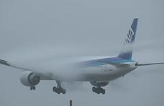 JA780A (edo420) Tags: d5 500mmf56 pflens pfレンズ 飛行機 airplane 全日空 boeing ボーイング b777 成田 narita chiba 千葉 japan ja780a