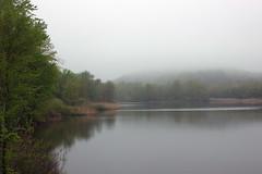 morningfog (michaelmaguire4) Tags: forest lake fog
