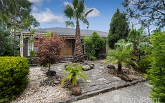 79 Greenvale Drive, Greenvale VIC
