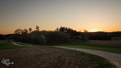 Evening Walk II (judithrouge) Tags: sundown evening clearsky abendrot abendlicht abenddämmerung abend weg way