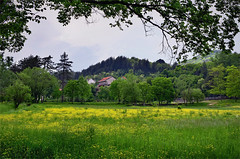 Spring Colours (Jocelyn777) Tags: spring fields green yellow colours landscape trees grass foliage countryside houses buildings cetinje montenegro balkans travel