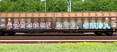 graffiti on freights (wojofoto) Tags: amsterdam nederland netherland holland graffiti streetart cargotrain freighttraingraffiti freighttrain freights fr8 vrachttrein wojofoto wolfgangjosten trein train debbie