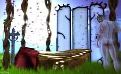 POST #339 (Daniel White - Model & Blogger) Tags: amazing blog blogger bloggersl bestoftheday bloggerssl fashion fashiostyle favorite fashionsl fabulous follow follow4follow followme fotografia goodlook like like4like likepost likeback likers likealways look life modelsl model moda marketplace modasl morefashion metaverse original outfit post pose picoftheday pic popularpic photooftheday playgame secondlife sl shop store segundavida second style stylesl trend tagsforlikes virtuallife virtualife vidavirtual world lunacy fantasyfaire