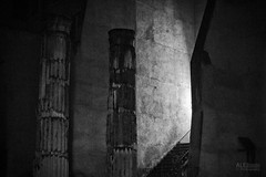 (ale_brando) Tags: night nikonfx romebynight nightphotography darkness dark lowlight light silverefexpro columns ruins monochrome blackwhite blackandwhite d700 50mm