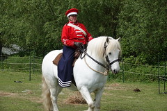 Rider (ec1jack) Tags: ec1jack kierankelly brentwood weald park country show essex england britain uk europe showground mayday spring may 2019 army horse white