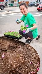 2019.05.04 Vermont Avenue Garden Blooms and Work Party, Washington, DC USA 01848