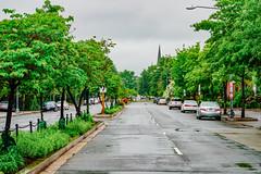 2019.05.04 Vermont Avenue Garden Blooms and Work Party, Washington, DC USA 01954