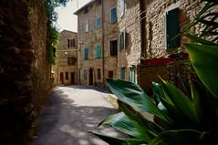 Borgo. (Enzo Ghignoni) Tags: fiori finestre foglie case borgo strada