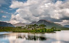 Derryclare Lough (Donard850) Tags: ireland derryclare lough lake mountains connemara clouds sky island trees d300 nikon