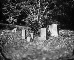 The Family - Wet Plate Negative (All Aspects of Photography) Tags: wetplate wet plate collodion grave cemetery 8x10 negative glass large format