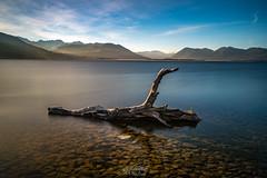 Calm II Mackenzie Region- New Zealand (CK NG (choookia)) Tags: calm mackenzieregion newzealand longexposure longexpose sunset deadwood dead tree lake mountain sonya9 sonyfe1635mmf28gm