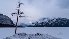 cold comfort (_Matt_T_) Tags: banff sunrise hdpdfa1530mmf28edsdmwr lakeminniwanka nationalpark improvementdistrictno09 alberta canada