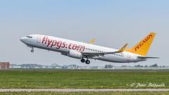 TC-CPO   Boeing 737-800  -  Pegasus (Peter Beljaards) Tags: msn33641 cfm567 hayal tccpo boeing737800 737 b737 boeing737 pegasus nikon7003000mmf4556 ams eham airplane aircraft schiphol haarlemmermeer