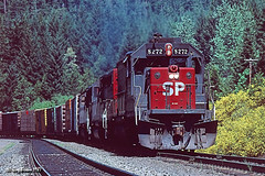 Fall color in the spring (C.P. Kirkie) Tags: oregon southernpacific sp emd sd40t2 spcascadesubdivision sporegondivision spshastaroute lanecountyoregon mccrediesprings tunnelmotor cascaderange trains freighttrain railroads forest