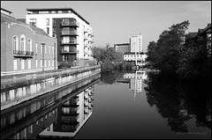 A calm morning (G. Postlethwaite esq.) Tags: bw derby derbyshire sonya7mkii blackandwhite monochrome photoborder photowalk reflection river trees water