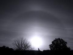 Morning halo. (ALEKSANDR RYBAK) Tags: гало утро рассвет восход солнце оптический эффект пейзаж небо монохромный monochrome halo morning dawn sunrise sun optical effect landscape sky