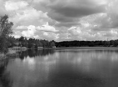 Waldsee Lauer (ako_law) Tags: 100asa 645 6x45 analog blackandwhite epsonperfectionv850pro film fujifilm fujifilmneopanacros100 hc110 hc110dilb hc110b mamiya mamiya645 mediumformat mittelformat schwarzweis selbstentwickelt selfdeveloped bw sachsen waldseelauer see wolken clouds reflection mirror leipzig