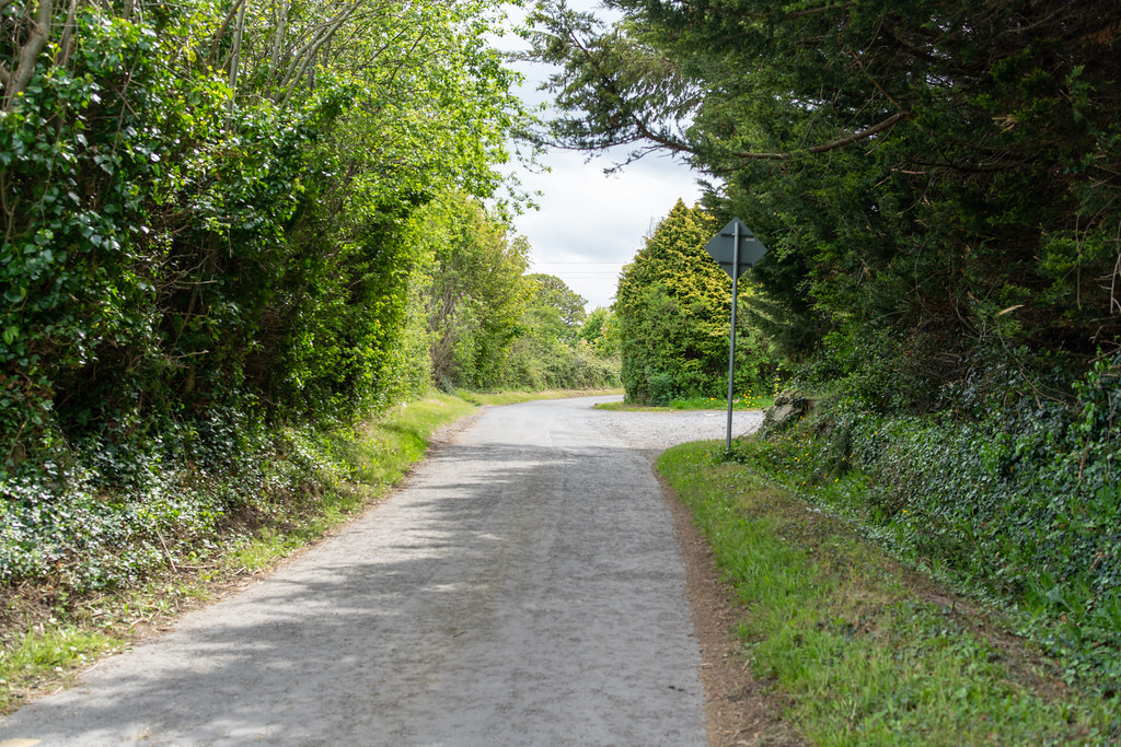 LEHAUNSTOWN LANE [NEAR THE LAUGHANSTOWN TRAM STOP IN CHERRYWOOD]-152260
