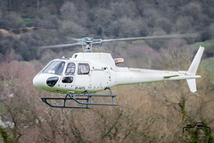 AS350B3 (Paul Beale Photography) Tags: b3alie airbus aircraft as350b3 aviation beale canon cheltenham elstree emailpaulpaulbealephotographycom festival ghitl helicopter helicopters helipad heliport horse ink paul photography racecoure rotary wwwpaulbealephotographycom ©paulbealephotography