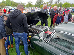E Type Jaguar, Shanes Castle steam rally (Trevor Lawrence Photos Northern Ireland) Tags: e type jaguar v 12 engine shanes castle steam rally randalstown brtish racing green classic cars county antrim