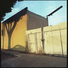 Cypress Park evening (ADMurr) Tags: la eastside cypress park kodak ektar zeiss planar dac427 hasselblad 500cm 80mm