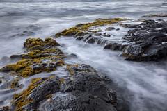 Invidious (Ramen Saha) Tags: hawaiʻi seascape punaluʻublacksandbeach bigisland longexposure ramensaha lavarock punaluʻu water rock limu algae hawaii
