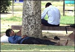 Siesta (mkumar.photographer001) Tags: undershade indiagate siesta atrest newdelhi india man sleepingman