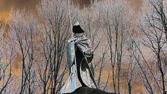 Knight (. Andromeda.) Tags: sculpture stainlesssteel knight sword armour trees shield helmet false colour