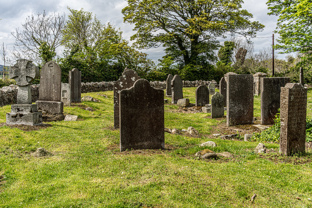 TULLY CHURCH AND CHURCHYARD [LEHAUNSTOWN LANE DUBLIN]-152343