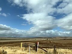 Gulnare - Flinders Ranges, South Australia (Marian Pollock) Tags: landscape australia southaustralia fields clouds sunny crops bluesky iphone gulnare