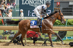 Cummings (Casey Lynn Photos) Tags: 2019 2019copyright horse horseracing racehorse horserace horses elpotroroberto canon canonphotography canonusa canonlens canonphoto canonphotos canoncamera mirrorless churchilldowns louisville kentucky kentuckyderby kentuckyoaks
