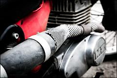 MZ ISDT replica (G. Postlethwaite esq.) Tags: 2stroke dof derbyshire ecclesbournerailway highpeakjunction leawoodpumphouse mzisdt bokeh closeup depthoffield engine exhaustpipe fullframe motorbike motorcycle photoborder replica selectivefocus
