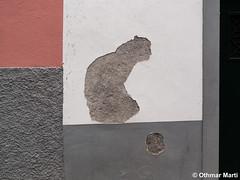 A cat and a ball (OthmarMarti) Tags: dmcg6 lumixgvario14140mmf3556 lumix14140mm madeira prt panasonic portugal ribeirabrava tabua geo:lat=3267098115 geo:lon=1706443472 geotagged cat ball silhouette island madeiraisland