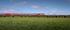 High Speed Train (Andrew Shenton) Tags: hst class 43 intercity125 highspeedtrain ryther york ecml