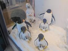 50285537_757894451250841_6090960093329752064_n (en-ri) Tags: pinguini penguins vetrina omino pupazzo di neve giallo nero bianco