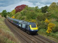43168 (Jonnyvalenta) Tags: 43168 scotrail hst 125 mtu class 43 high speed train inter city