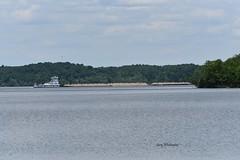 MV James H. Hunter-Hines Furlong Line_1441e (Porch Dog) Tags: 2019 garywhittington kentucky nikond750 nikkor200500mm lakebarkley cumberlandriver towboat barges river water