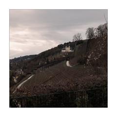 Chapel View (Thomas Listl) Tags: thomaslistl color square 50mm sky clouds mood atmosphere käppele würzburg hill landscape vineyard church chapel ngc