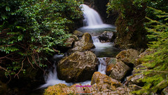 Tollymore forest cascade waterfall (Photographs and Images of Northern Ireland) Tags: tollymore forest park walks red squirell deer waterfalls shimna caravans parking mourne mountains newcastle sunsets