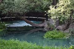 Parco Lavino (Maria Teresa D) Tags: parco lavino lago natura riservanaturale abruzzo italia decontra verde acqua scafa