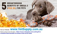 VS-Fish-Oil (VetSupply) Tags: vetsupply dog care australia dogcare