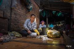 Cambogia - Il pescato del giorno. (iw2ijz) Tags: cambodia cambogia street viaggio trip travel nikon reflex d500 market people person persone fish fresco pesce mercato pescheria