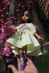 4H5A5327c (Yumi♡) Tags: bjd doll garden yumistudio flowers spring glacedolls 2019 yellowdress