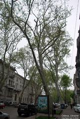 Одеса, Травень 2019 InterNetri Ukraine 031