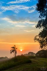 IMG_S2-7426 (Max Hendel) Tags: sunrise nascerdosol sun sol amanhecer morning amanhecendo bymaxhendel bymaxhendelphotography pormaxhendel maxhendelphotography maxhendelphotostream rodoviasp225pirassunungaspbrasil beautifulsunrise highwaysp225pirassunungaspbrazil sky