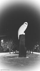 The Owl Statue on Thursday morning (garydlum) Tags: owlstatue publicart canberra australiancapitalterritory australia