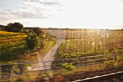 A winding road on German plains (Sondre_RS) Tags: germany deutschland plains landscape winding road db die bahn train railroad travelling window sun rail berlin dresden canon eos 30d ef1740mm f4l 1740mm f4