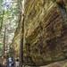 Cedar Falls_DSC1572