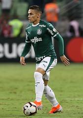 Palmeiras x San Lorenzo-ARG (08/05/2019) (sepalmeiras) Tags: raphaelveiga allianzparque copalibertadores palmeiras sep sanlorenzo